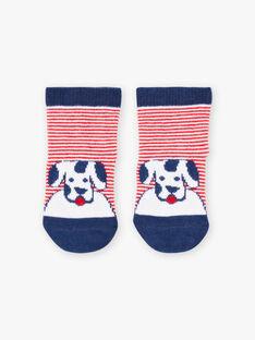 Baby Junge gestreifte Socken mit Hund Druck BABASTIEN / 21H4BG11SOQ720