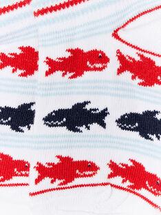 Gestreifte Socken und Haie ZIMAGE / 21E4PGT1SOB000