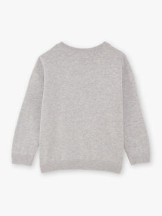 Baby Junge Grau Pullover BAMIAGE / 21H3PG21PUL943