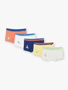 Packung mit 5 Boxershorts für Jungen ZEMAINAGE / 21E5PG31BOX402