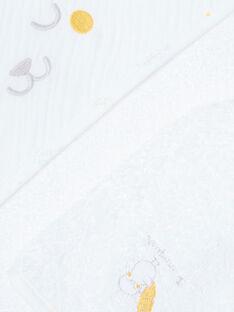 Schwammspitze und Handschuh ZOMORGAN / 21E0AMG1POI000