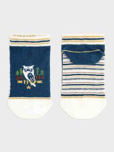 Entenblaue Socken Junge SACHAUSAGE / 19H4PG21SOB714