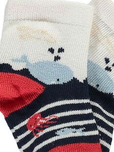 Blaue Socken RANINOU / 19E4BGE1SOQC214